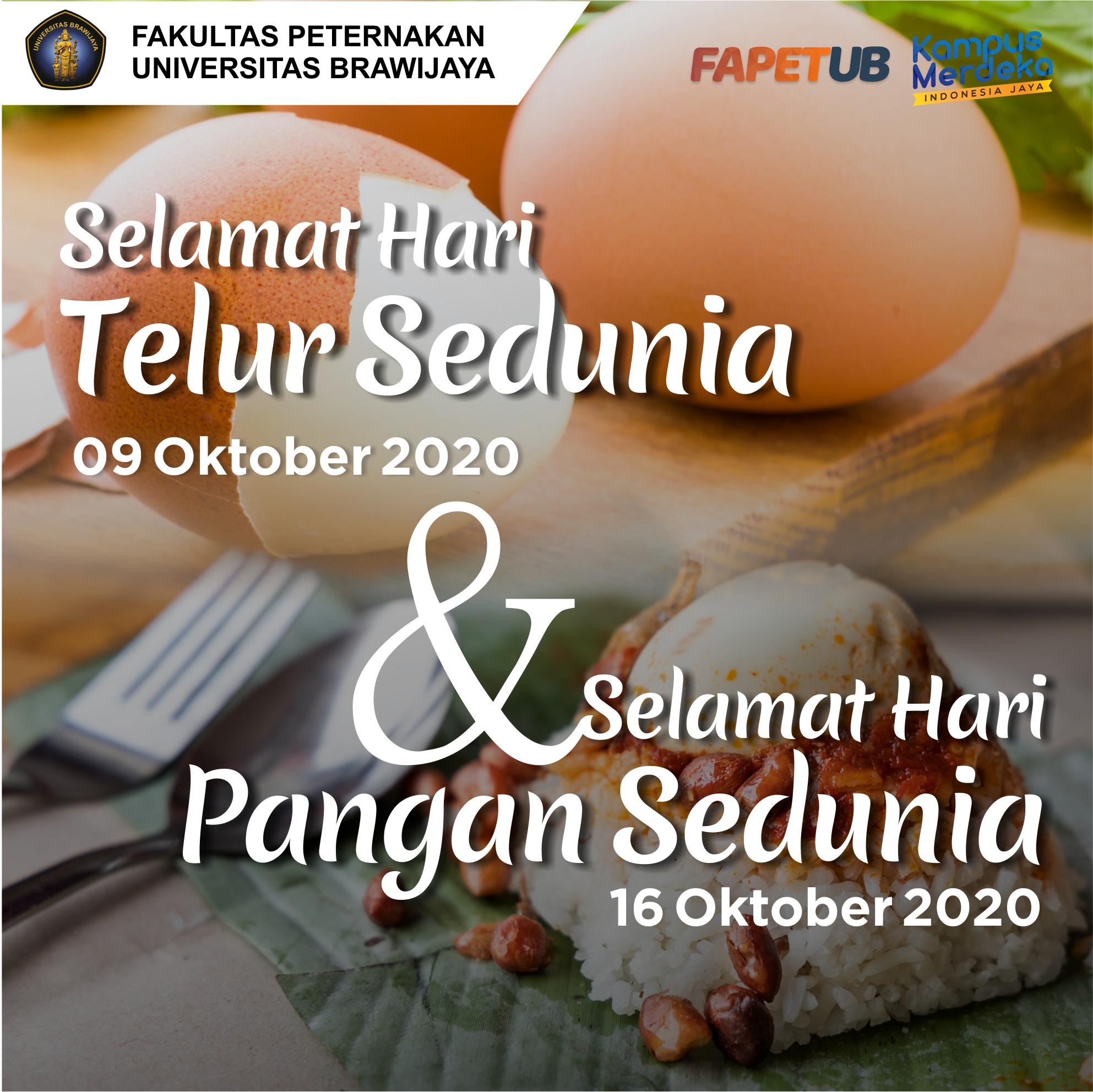 Peran Telur di Hari Pangan Sedunia