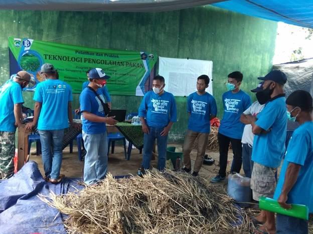 Pelatihan Teknologi Pakan pada Kelompok Ternak di Kabupaten Malang
